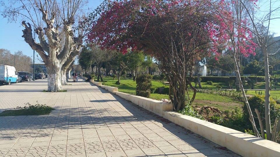 Ibn Khafajah Park