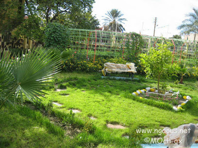 N'Gaous Garden
