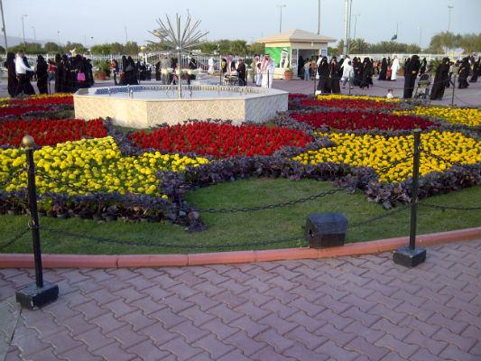 حديقة الزهور