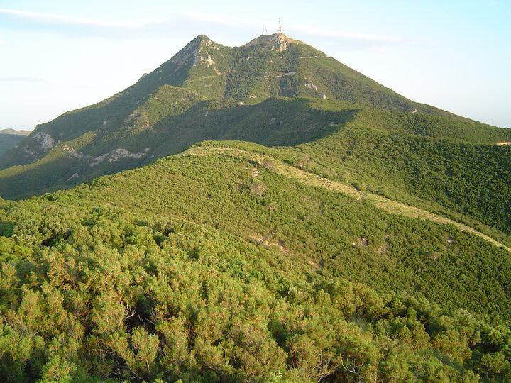 اخبار عن الحديقة الوطنية ببوقرنين