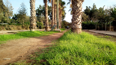 Al Dakhla Park