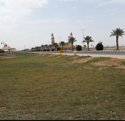 حديقة الملك عبدالله بالقويعية