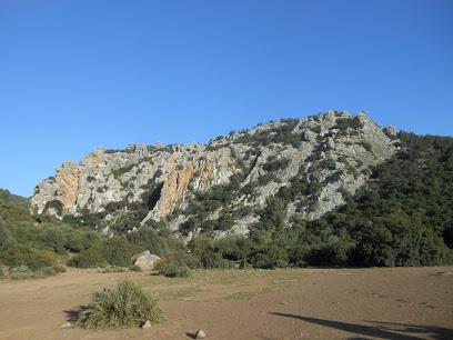 Ain Dekhla park