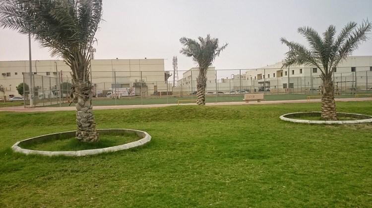 حديقة عبدالله فؤاد