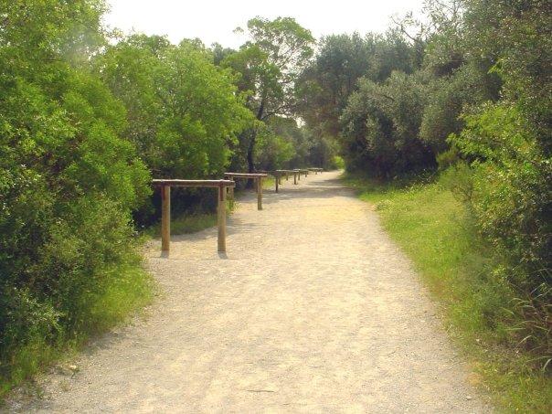 Parcours de Santé - El Manar 1