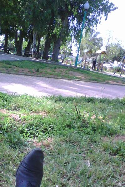 Olof Palm Public Garden