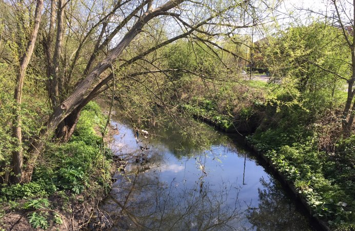 Brent River Park