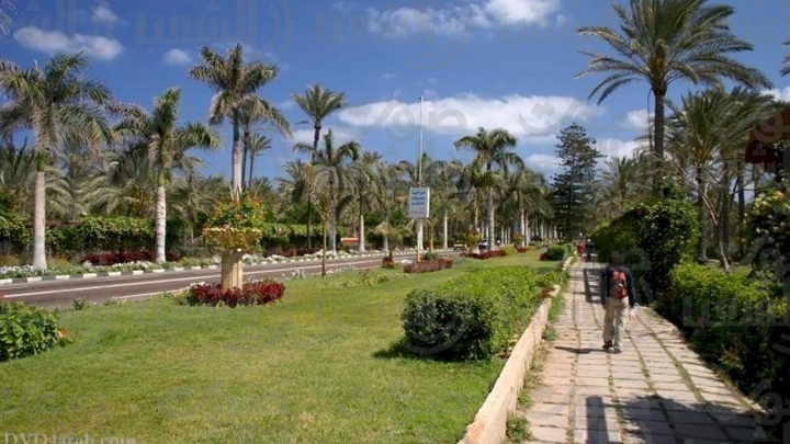 اخبار عن حديقة النيل