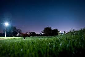 Hythe Park