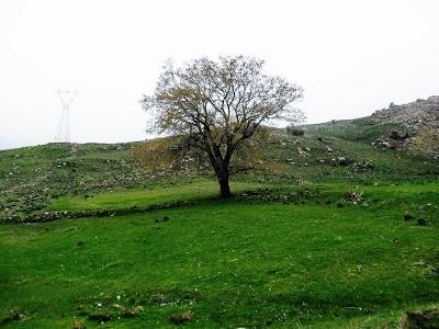 منتزه جبل مقرس
