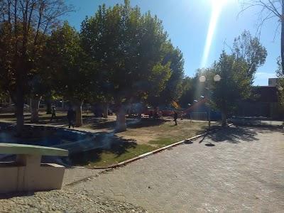 Bouchareb Garden