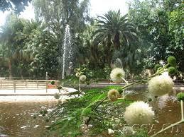 Jardin London