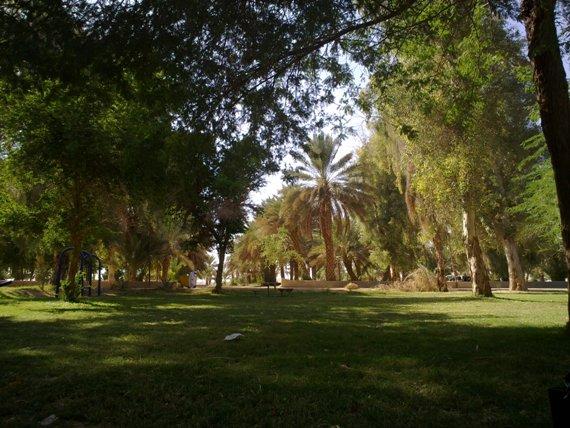 AL Mashtal Park