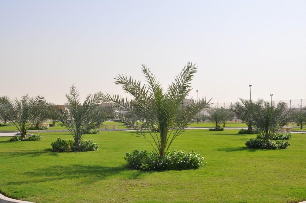 Al Ramaqia Park