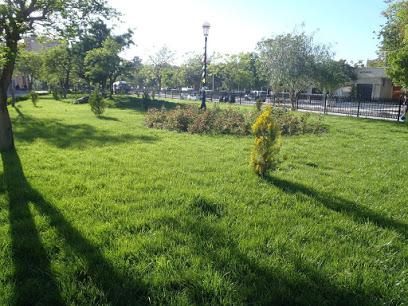 Liberty Park Djelfa