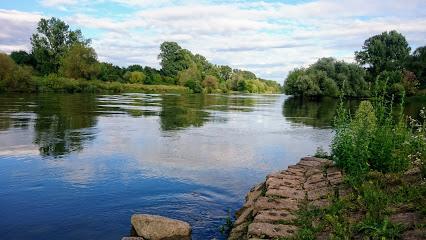 Unterer Neckar: Maulbeerinsel