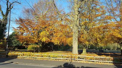 Nuns Moor Park