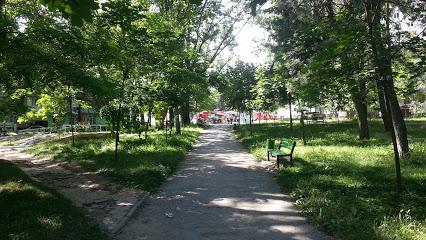 Парк Автодром