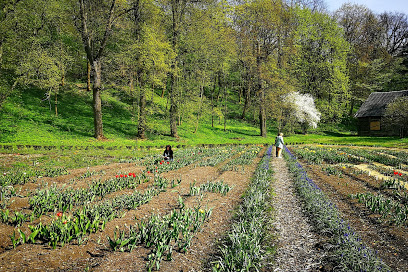 Vilniaus universiteto botanikos sodo Vingio skyrius