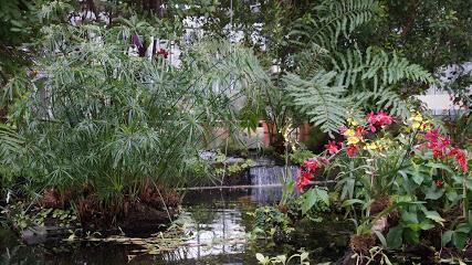 Botanical Garden - Leipzig