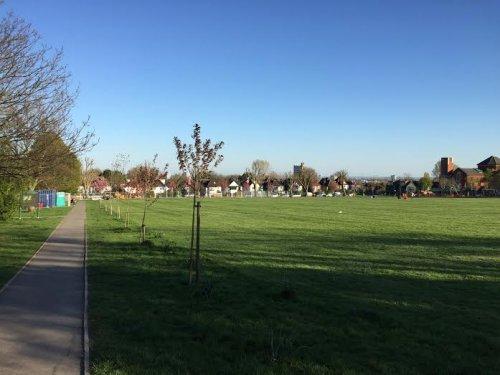 Tiverton Playing Field