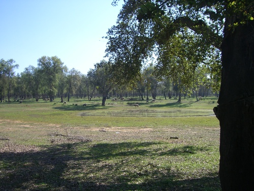 Parc MAAMOURA