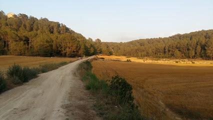 Campagna del Bosco di Tarragona