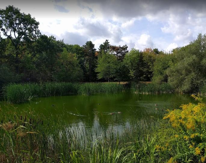 Schönauer Park