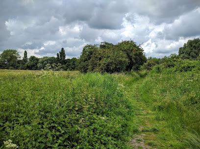 Lynton Way Park