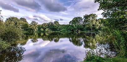 Walmesley Park