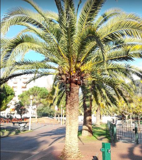 Le Parc Général Lécuyer