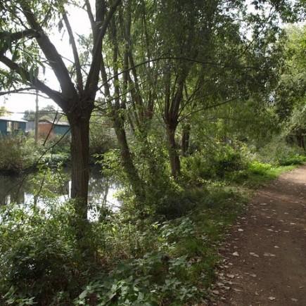 FitzHerbert Walk