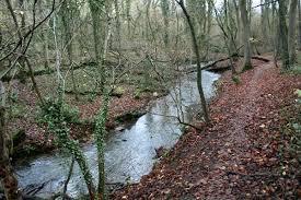 Anston Stones Wood