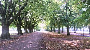 Cringle Park
