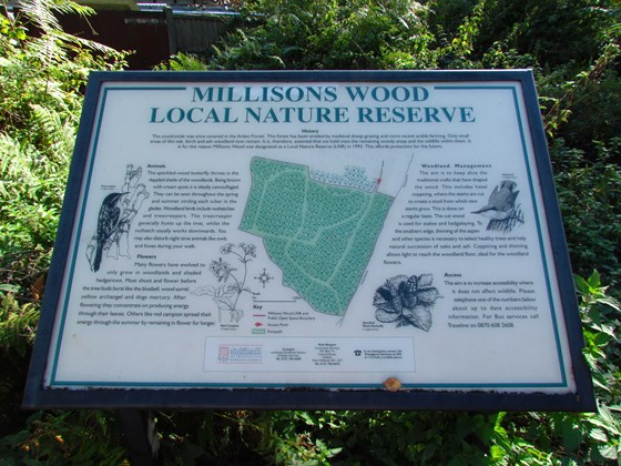 Millison's Wood Local Nature Reserve