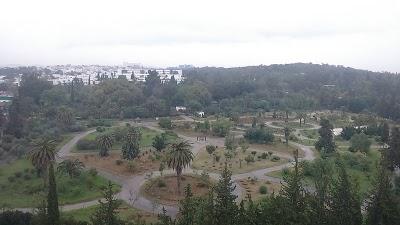 حديقة البلفدير