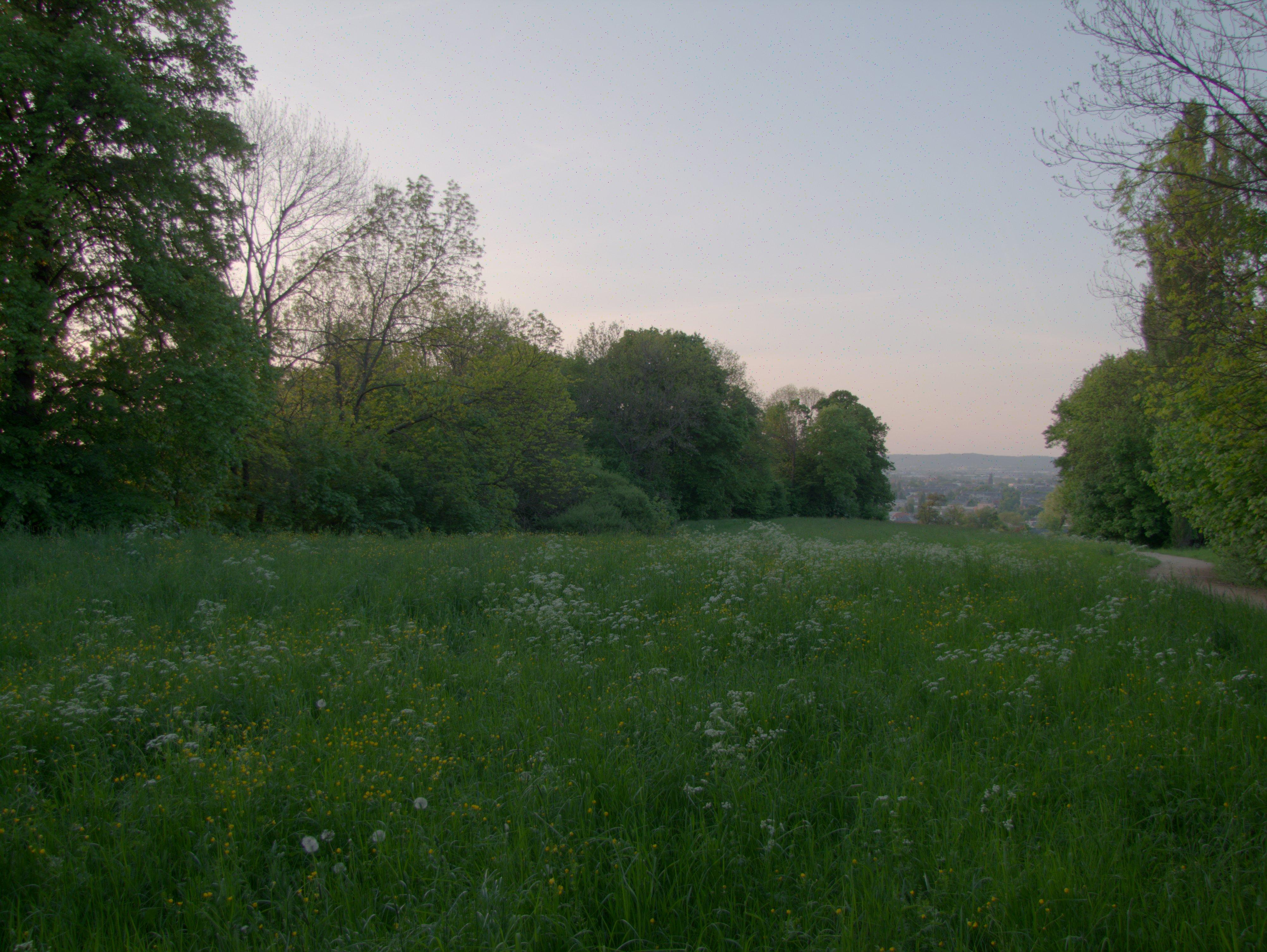 Alter Bienertpark