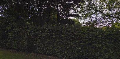 حديقة ويفرهيل