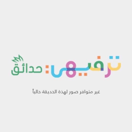 Al Shahama Park 2