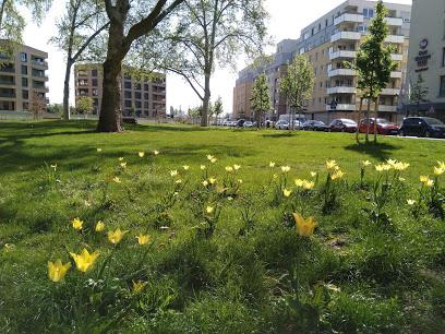 Der Glückstein-Park