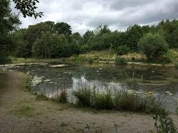 Bateswood nature reserve
