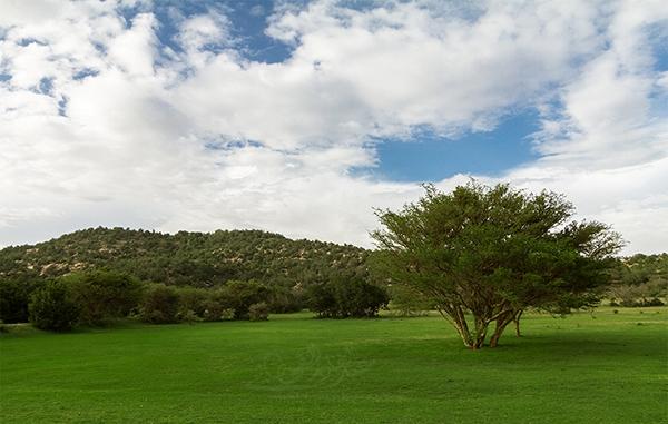 حدائق ترفيهي | حدائق | منتزه الأمير سلطان