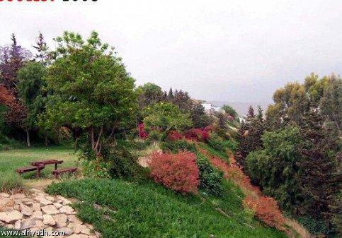 AL Fara'a Park
