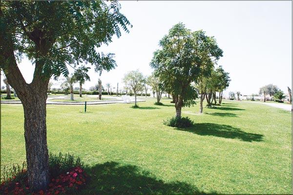 Thameed Ladies Park