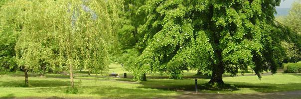 Devonshire Park