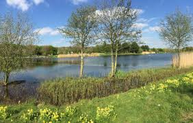 Rushcliffe Country Park