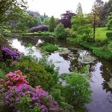 Consall Gardens
