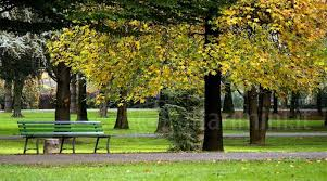 Parco Fabbri