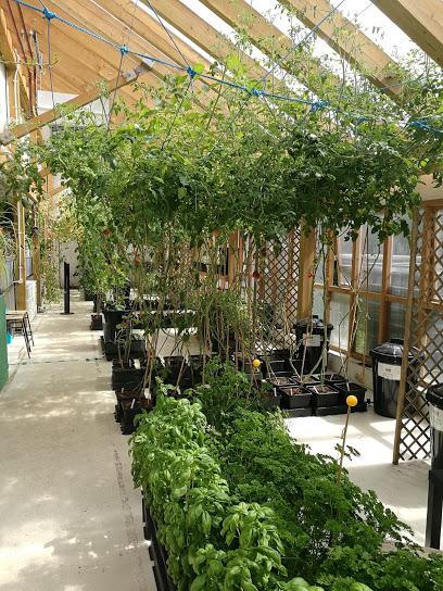 Incredible Aqua Garden