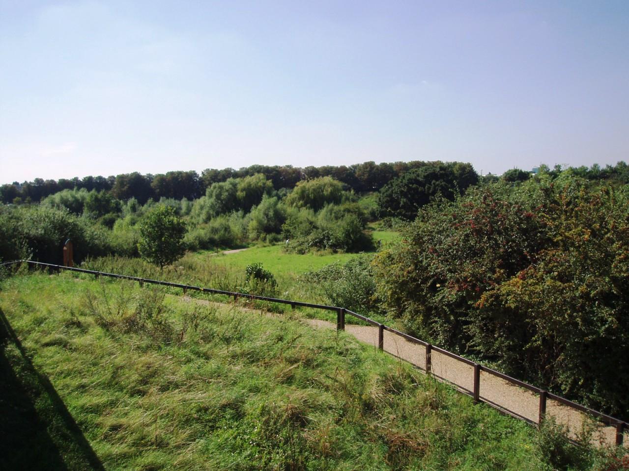 Horsenden Hill